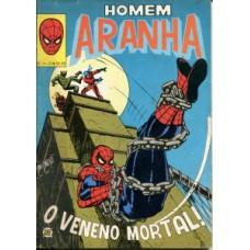 41287 Homem Aranha 31 (1981) Editora RGE