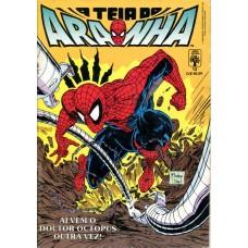 A Teia do Aranha 13 (1990)