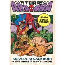 A Teia do Aranha 18 (1991)